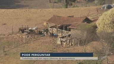 Trabalhador rural tem regras diferentes de aposentadoria - Trabalhador rural tem regras diferentes de aposentadoria