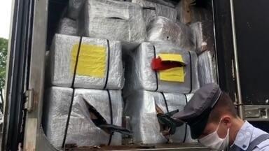 Caminhoneiro é preso ao transportar cocaína e maconha na Rodovia Castello Branco em Tatuí - Um homem de 48 anos foi preso ao transportar tijolos de cocaína e maconha na Rodovia Castello Branco (SP-280), em Tatuí (SP). Segundo informações da Polícia Militar Rodoviária, equipes em patrulhamento suspeitaram do motorista e realizaram a abordagem próximo ao quilômetro 135.