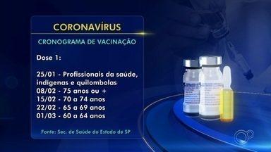Governo de SP anuncia calendário de vacinação contra o coronavírus - O governo do estado de São Paulo anunciou, nesta segunda-feira (7), o calendário de vacinação contra a Covid-19. A campanha deve começar no dia 25 de janeiro.