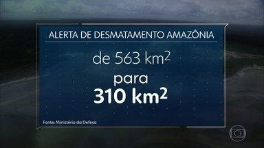 Desmatamento na Amazônia cai 45% em novembro, diz ministério da Defesa - Números anunciados hoje são comparados com o mesmo mês do ano passado.