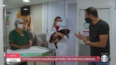 Veterinários madrugam para cuidar de animais em clínicas 24h - Durante a pandemia, hospiais veterinários registraram aumento nos atendimentos de emergência