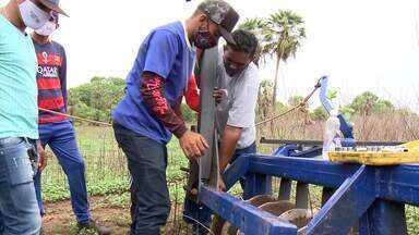 Curso leva capacitação técnica para jovens produtores da região de Floriano, no Piauí - Capacitação