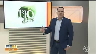 Quadro Biodicas fala sobre os cuidados ao gaurdar as frutas - Professor Alexandre passa todas as dicas.