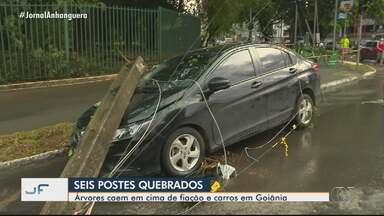 Temporal derruba árvores e postes de energia no Parque Areião - Um dos postes caiu em cima de um carro.