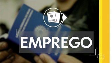 Confira vagas de emprego disponíveis nesta quinta-feira - Há oportunidades em Petrolina, Caruaru, Recife e outras cidades.