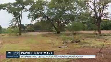 Detran libera área do Parque Burle Marx usada como depósito de carcaças - Foram retirados 1.602 carros.
