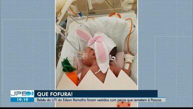 Bebês de UTI Neonatal de hospital em João Pessoa são fantasiados de 'coelhinhos da Páscoa' - Ação aconteceu no Hospital Edson Ramalho.