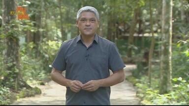 Assista ao Amapá Rural na íntegra 18/04/2021 - Assista ao Amapá Rural na íntegra 18/04/2021