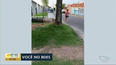 Telespectadores temem queda de árvores no ES - Veja a seguir.