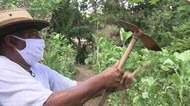 A força da terra - Conheça a ocupação que desenvolveu um tipo de agricultura que cuida da natureza.