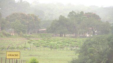 Saiba como será a previsão do tempo da semana em Sergipe - Saiba como será a previsão do tempo da semana em Sergipe.