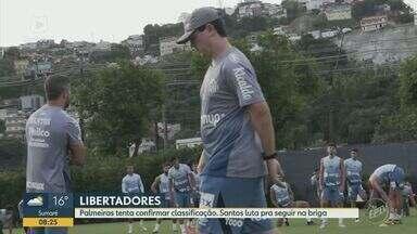 Palmeiras e Santos jogam pela fase de grupos da Libertadores - Palmeiras está no Equador para a partida contra o Independiente del Valle e Santos enfrenta o Boca Junior na Vila Belmiro.