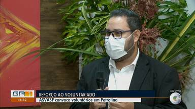 Asvasf abre vagas para 100 voluntários participarem de campanha solidária - A instituição está com o atendimento presencial suspenso durante a pandemia, mas continua na ativa com campanhas sociais.