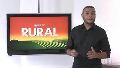Veja a edição do Inter TV Rural deste domingo, 09/05/2021 - Programa traz as novidades do campo que movimentam a economia no interior do Rio.