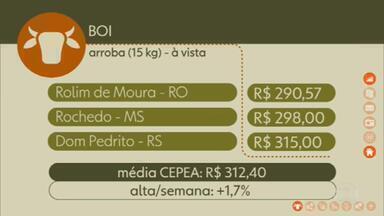 Confira os preços do boi gordo - Em Rolim de Moura (RO), a arroba à vista foi negociada por R$ 290,57 na sexta-feira (21). Em Rochedo (MS), por R$ 298,00. Em Dom Pedrito (RS), por R$ 315,00. A média CEPEA fechou a semana em R$ 312,40, uma alta de 1,7%.