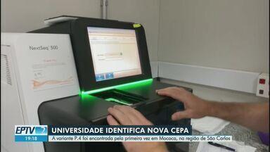 Unesp identifica variante P.4 pela primeira vez na região de São Carlos, SP - Mutação foi encontrada em paciente de Mococa, SP, mas já circula em outras cidades. Ainda não é possível saber se ela é mais contagiosa ou perigosa.
