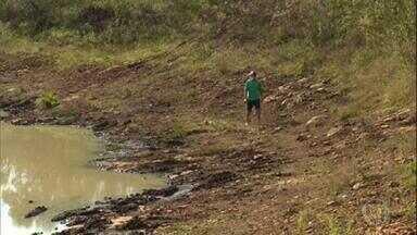 Agricultores do RS sentem impactos da seca - Passa de 120 o número de municípios do Rio Grande do Sul que estão em situação de emergência por causa da falta de chuvas.