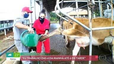 'Belezas da Terra': Marlene - Marlene era dona de casa e comerciante quando decidiu assumir os negócios da família no campo. Atualmente, ela conta com um rebanho de 200 vacas Jersey e produz leite no Paraná