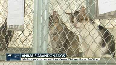 Leis de amparo aos animais ainda não são 100% seguidas em Boa Vista - Durante a pandemia, o número de animais domésticos abandonados apresentou um grande crescimento.