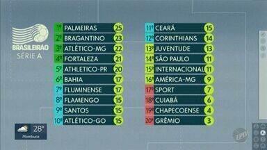 Veja a classificação dos times na Série A do Brasileirão - Palmeiras é líder, enquanto Grêmio está na lanterna da competição.