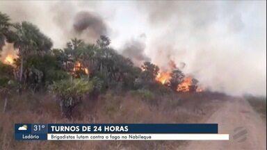 Incêndios avançam na região do Nabileque e fronteira - Brigadistas enfrentam longas jornadas de trabalho para conter as chamas