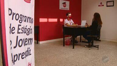 Jovens com baixa escolaridade buscam emprego para ajudar famílias na região de Campinas - Levantamento feito pelo Instituto Brasileiro de Pró-Educação, Trabalho e Desenvolvimento mostra o crescimento de encaminhamentos de pessoas entre 18 e 24 anos para o mercado de trabalho em 2020.