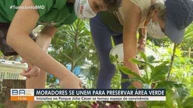 Moradores se unem para preservar área verde em bairro de Salvador - Iniciativa acontece no Parque Júlio César e se tornou espaço de convivência.