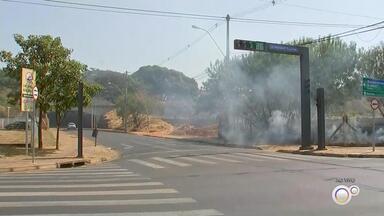 Queimada atinge área de vegetação às margens de avenida em Rio Preto - Uma queimada atingiu uma área de vegetação às margens da Avenida Philadelpho Manoel Gouveia Netto, em São José do Rio Preto (SP), nesta sexta-feira (13).