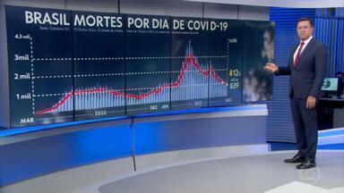Média de mortes por covid no Brasil recua para 839 por dia - Nesta segunda-feira, o país registrou 363 óbitos.