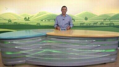 MG Rural - Edição de 12/09/2021 - Clima adverso e geadas geram aumento dos custos na produção do leite em Uberaba. Colheita do alho registra números positivos no Alto Paranaíba. Pecuarista de Silverânia, na Zona da Mata, ganha prêmio pela boa gestão da produção leiteira e trato com os animais. Veja também oscilações do mercado do boi gordo em Minas Gerais e quais cursos são oferecidos pelo Senar.