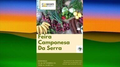 Palmeira dos Índios sedia edição da Feira Camponesa - Além da venda de produtos, evento conta com atrações culturais.