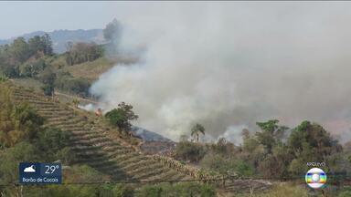 Estado reforça fiscalização para evitar incêndios criminosos em matas - Governo anunciou a criação de uma força-tarefa contra as queimadas.