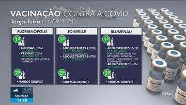 Confira o cronograma de vacinação contra a Covid para terça-feira - Confira o cronograma de vacinação contra a Covid para terça-feira