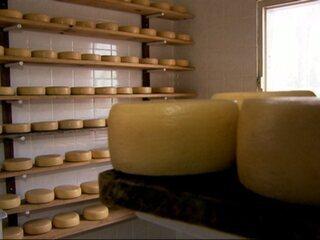 Enquanto aguardam por revisão, produtores movimentam comércio clandestino (Foto: Globo.com)