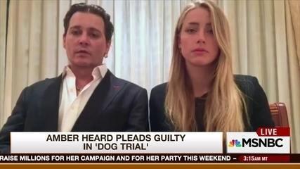 Johnny Depp e Amber Heard pedem desculpa por levar cães à Austrália