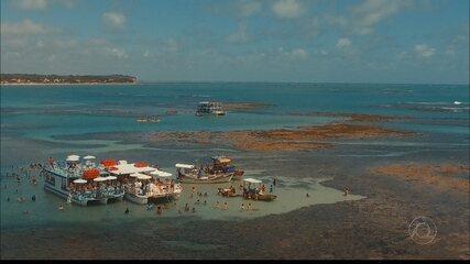Conheça as belezas das piscinas naturais da praia do Seixas