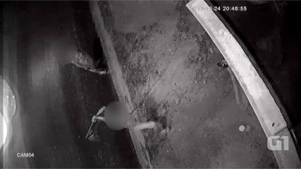 Cachorro é agredido com enxada em Atibaia