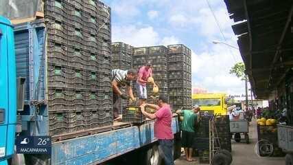 Caminhões chegam com mercadorias ao Ceasa em Pernambuco