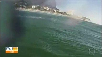 Tubarão é visto na praia da Barra da Tijuca