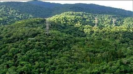 Equatorial compra distribuidora da Eletrobras no Piauí em 1º leilão