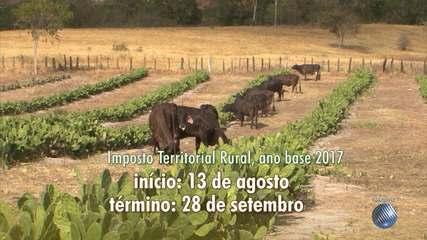 Prazo para envio da declaração do Imposto Territorial Rural começa nesta segunda (13)