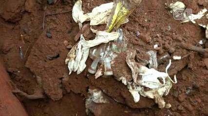 Lixo estava descartado e enterrado em fazenda da família de deputado estadual