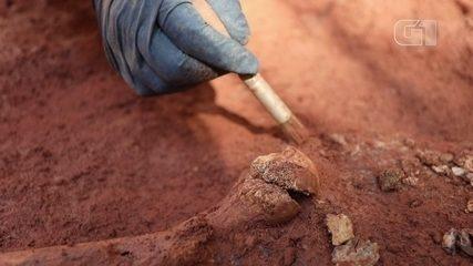 Escavação arqueológica traz à tona primeiro cemitério público de SP