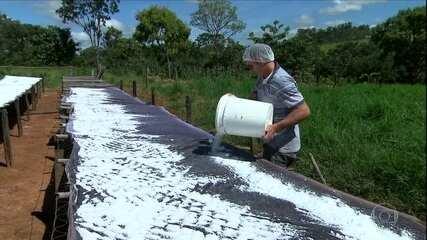 Cooperativismo transforma comunidade rural em Goiás