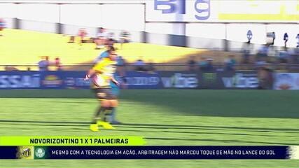 """Gaciba analisa atuação do VAR no jogo entre Palmeiras e Novorizontino: """"Não vem pra solucionar todas as jogadas"""""""