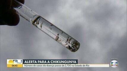 Rio registra mais de 2,7 mil casos de chikungunya em 2019