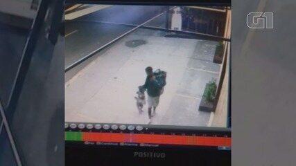 Cachorro é furtado em São Vicente, SP