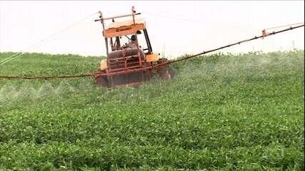 Programas reduzem uso de agrotóxicos e dano ambiental, e geram economia para produtor