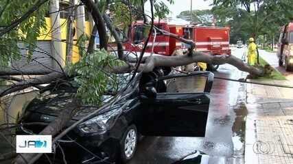 Chuva causa vários estragos em Goiânia