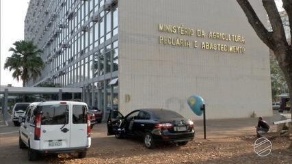 Governo federal prepara o lançamento do plano safra
